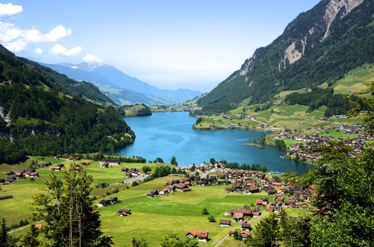 швейцарское гражданство швейцария гражданство